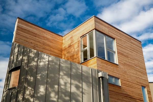 Larch Cladding Battens